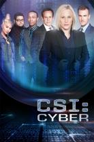 Série TV - Les experts : Cyber