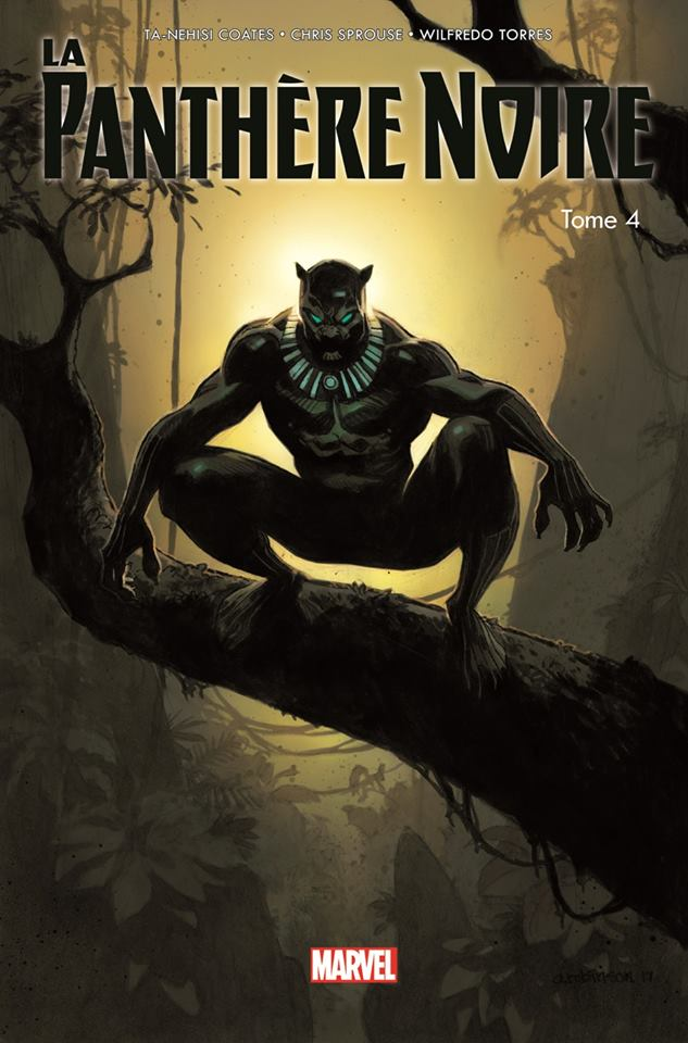 https://img.sanctuary.fr/cs/big/black-panther-comics-volume-4-tpb-100-marvel-v2-issues-v6-303982.jpg