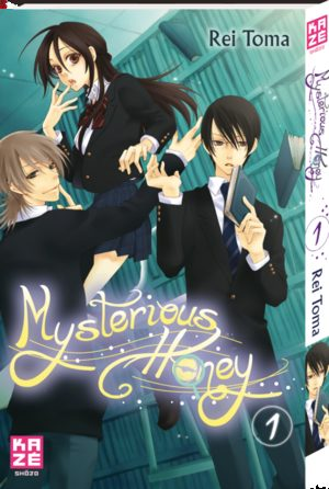Mysterious Honey Manga