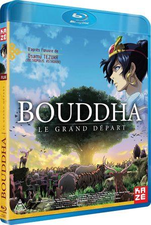 Bouddha - Le Grand Départ Film