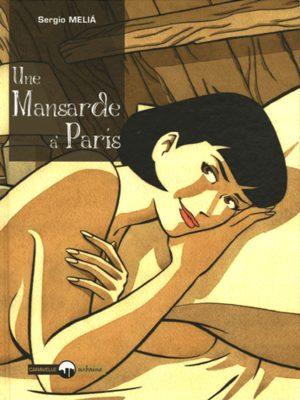 Une mansarde à Paris