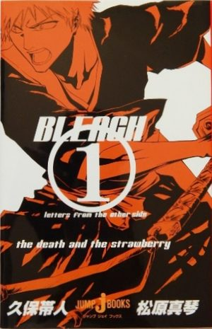 Bleach : Letters from the other side