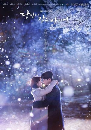 While You Were Sleeping (drama)