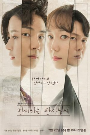Your Honor (drama)
