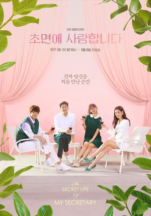 The Secret Life of My Secretary (drama)
