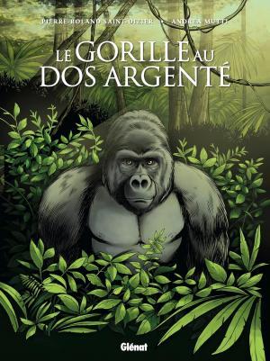Le gorille au dos argenté