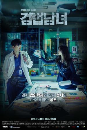 Partners for Justice (drama)