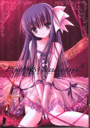 Duel Dolls Visualfanbook Fanbook