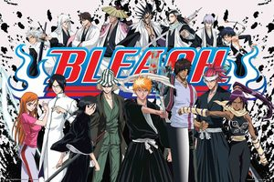 Bleach Série TV animée