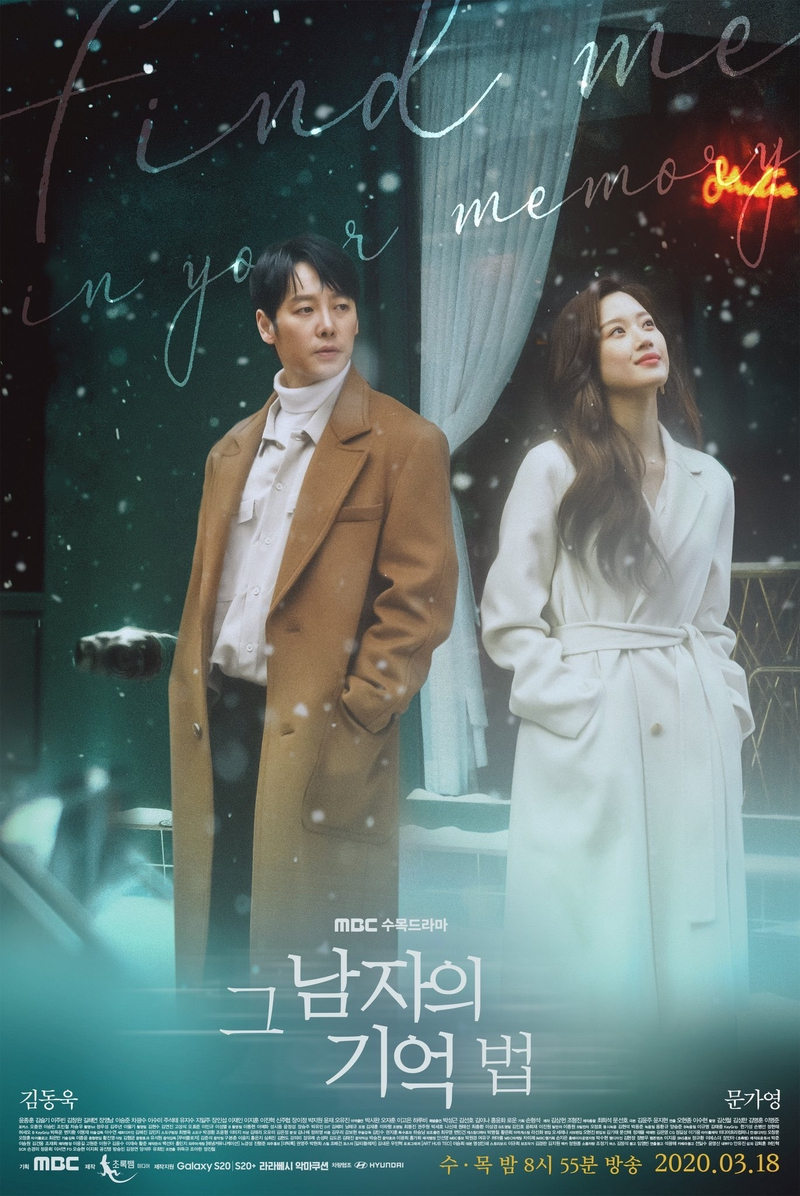 Find Me in Your Memory (drama)