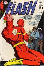 Flash 198