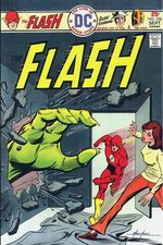 Flash 236