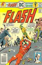 Flash 241