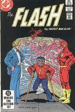 Flash 317