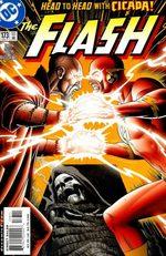 Flash 173