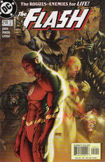 Flash 210