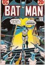 Batman 249 Comics