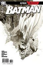 Batman 689 Comics