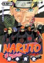 couverture, jaquette Naruto 41