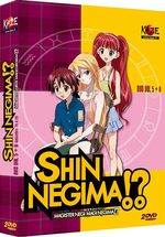 Shin Negima !? 3 Série TV animée