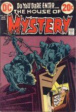 La Maison du Mystère 213