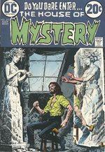 La Maison du Mystère 215