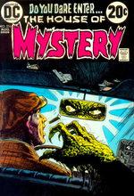 La Maison du Mystère 216