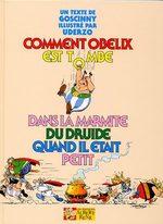 Comment Obélix est tombé dans la marmite du druide quand il était petit 1