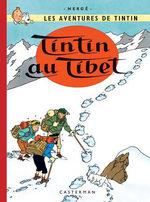 Tintin (Les aventures de) 19