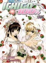 Ichigo 100% T.19 Manga