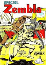Spécial Zembla 33