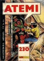 Atémi 230