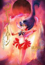 Pretty Guardian Sailor Moon 3