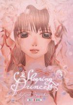 The sleeping princess T.3 Manga