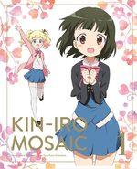 KinMoza! Kin'iro + Mosaic 1 Série TV animée