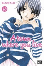 A Town Where You Live 18