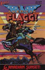 American Flagg 15