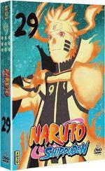 Naruto Shippûden 29 Série TV animée