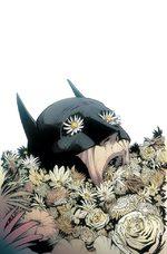 Batman 48 Comics