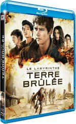 Le Labyrinthe : La Terre Brûlée 0 Film