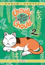 Choubi-choubi, mon chat pour la vie # 2
