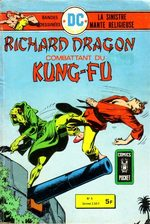 Richard Dragon # 8