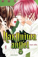 Hakoniwa Angel 4
