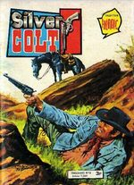 Silver Colt 45