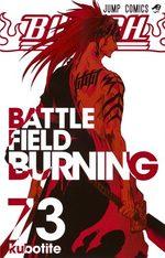 Bleach 73 Manga