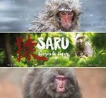 SARU, singes du Japon 1 Livre illustré