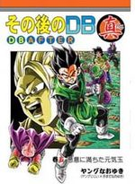 DB After 5 Dôjinshi