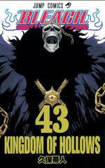 Bleach 43 Manga