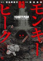 Monkey Peak # 3