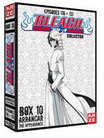 Bleach 10 Série TV animée